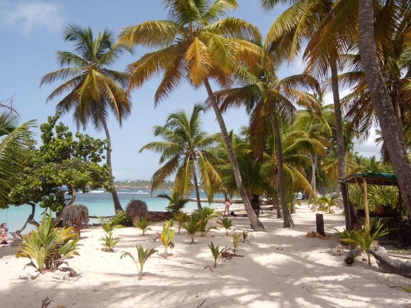 Guadeloupe 132